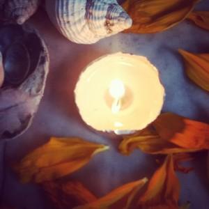 abundance sunflower petal altar